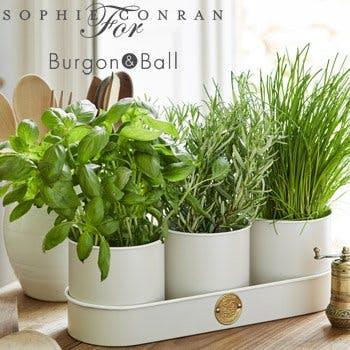 sophie conran for burgon & ball