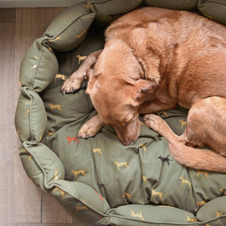 Dog-bed-sophie-allport